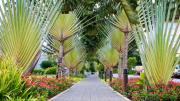 Accra Ghana LDS Temple Grounds