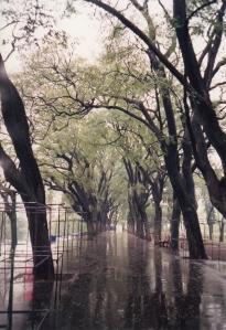 Mirrored Walk, Parque Lezama in Buenos Aires, Argentina
