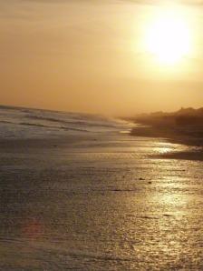 oceans-emerald-island-beach