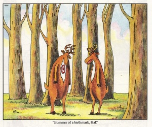 Gary Larson's The Far Side: 'Bummer of a birthmark, Hal.'